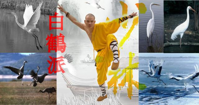 Kung Fu estilo de la Grulla Blanca.