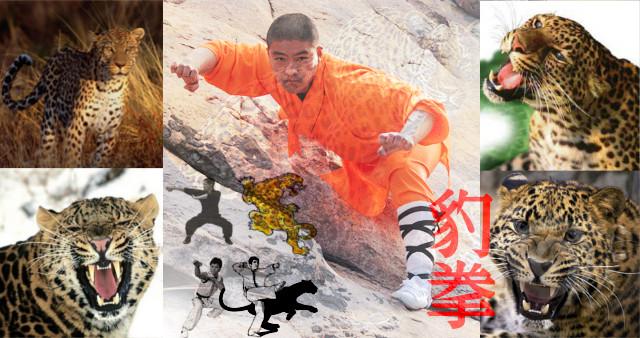 Kung Fu estilo del Leopardo.
