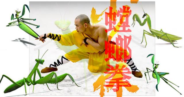 Kung Fu estilo de la Mantis Religiosa.