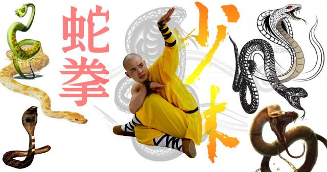 Kung Fu estilo de la Serpiente.