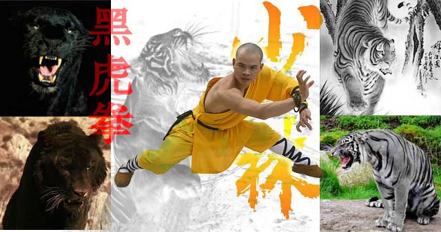 Kung Fu estilo del Tigre.